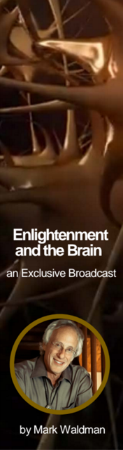 enlightenment and the brain
