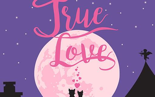 http://members.personallifemedia.com/wp-content/uploads/2017/07/cats-true-love-510x320.jpg