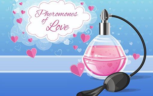 https://members.personallifemedia.com/wp-content/uploads/2017/07/pheromones-of-love.jpg