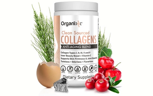 5 Super Collagen Food Sources For Female Health