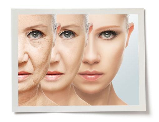 the health benefits of collagen