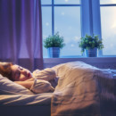 Misty Williams Free Insomnia eBook For Restful Sleep