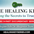 Free Endocrine Detoxification Video Series